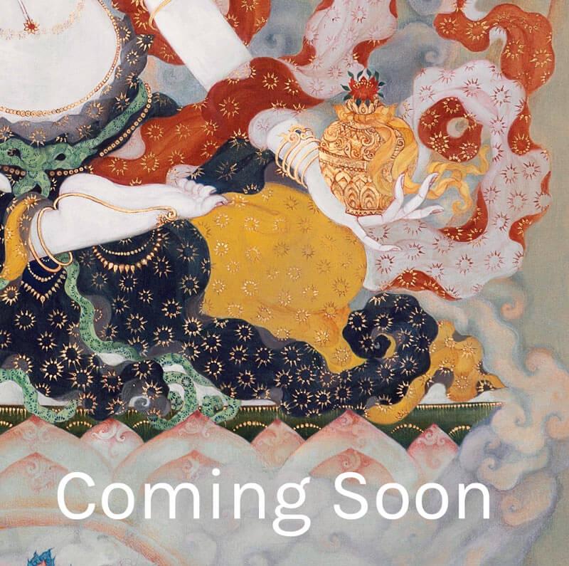One Plus One >> White Ushnishavijaya – Tara di Gesu
